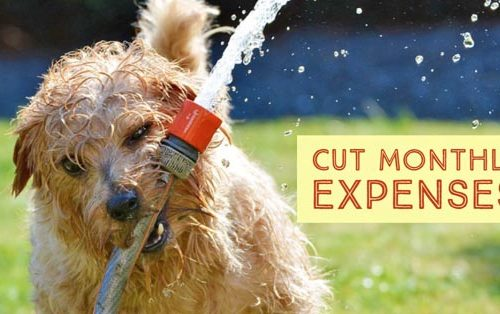 cut monthly expenses