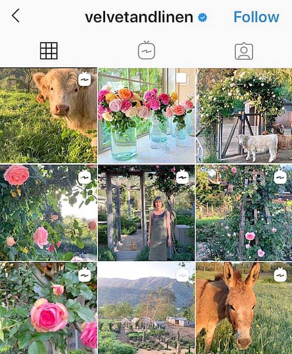 Velvet and Linen Instagram